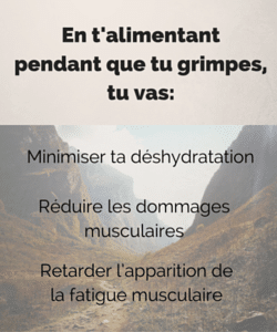 Alimentation escalade
